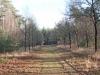 wandeling-bossen02-12-2012uen-uiterwaarden-arcen01kl