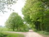 wandeling26-04-2009arcen9km08kl