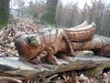 houten-bilden15-02-2009inhet-bos05kl