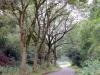 fietsen48km08-08-2010limburg07kl