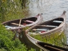 kanotocht-asseltse16-09-2012plassen08kl