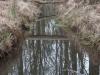 natuurgebied04-03-2012zwarte-water10kl