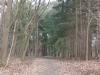 natuurgebied04-03-2012zwarte-water17kl
