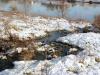 houtblerick-uiterwaarde11-01-2009maas-winter05kl
