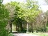 wandeling23-05-2010broekhuizenvorst-zicht-op-de-maas18kl
