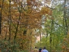 wandeling-crayelheide21-10-2012greune-long14kl