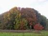 wandeling-crayelheide21-10-2012greune-long21kl