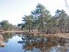 wandeling25-03-2012ravenvennen17kl